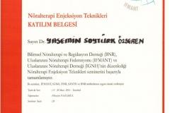 img003-624x883